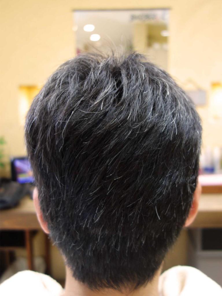 白髪ぼかし - ヘアカタログ-02-03