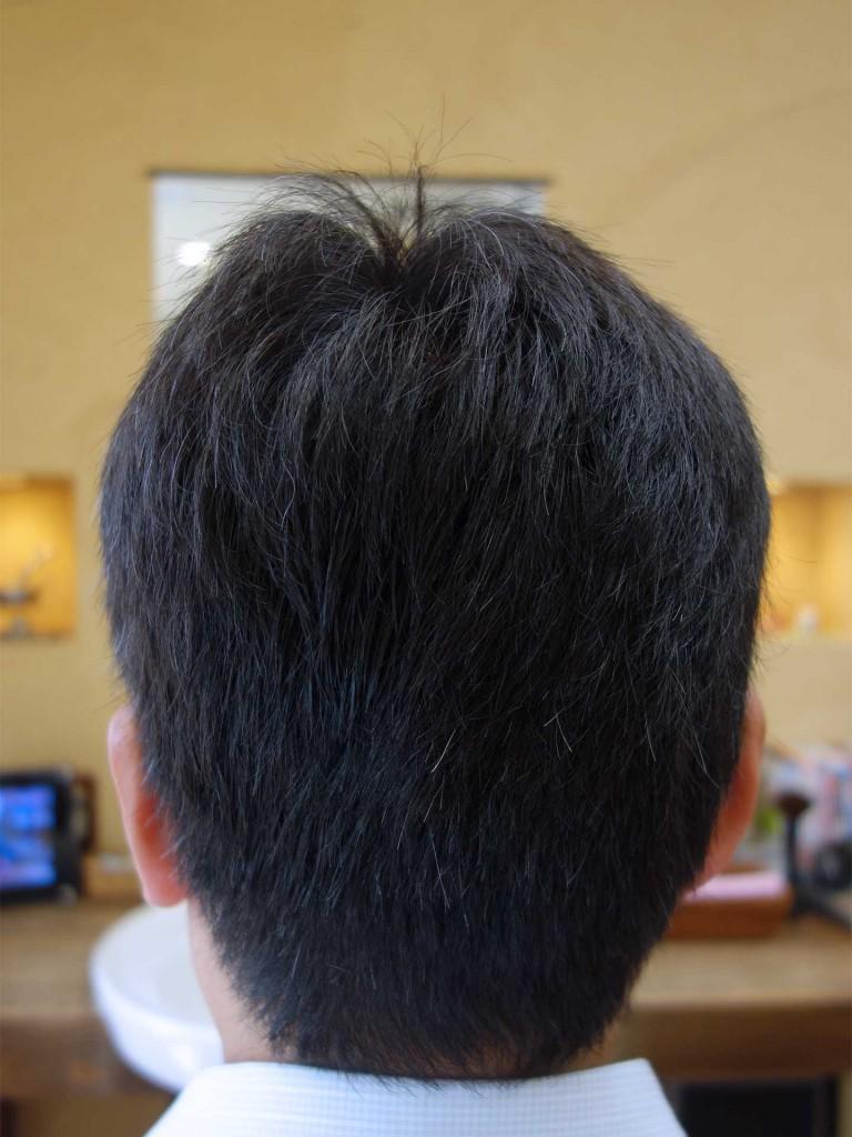 白髪ぼかし - ヘアカタログ-02-04